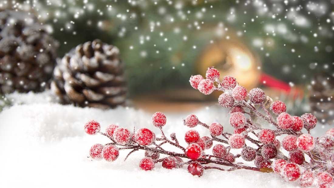 Frohe Weihnachten wünscht realkonzept